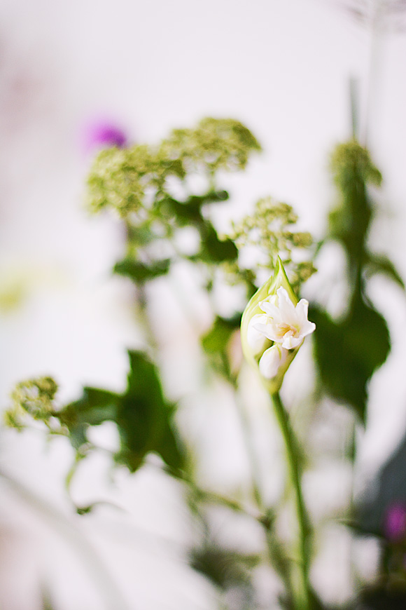 Altijd verse bloemen thuis met Bloomon!