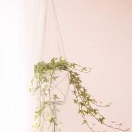Liefde voor … macramé plantenhangers
