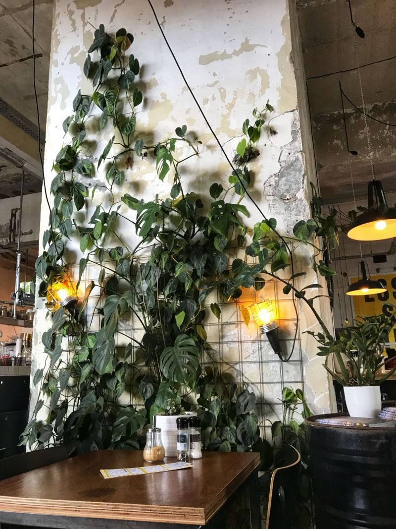 Industrial foliage Eindhoven cafe Bistro
