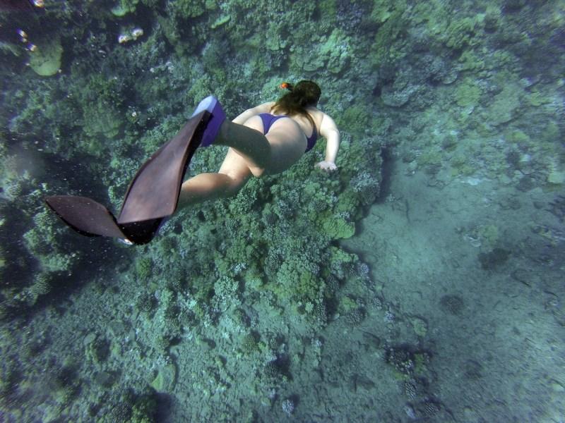 Diving-the-underwater-road-Bimini-Lost-city-of-atlantis