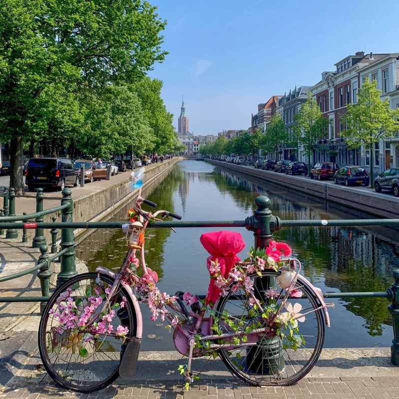 Floral-Bike-memorial-in-Spring-The-Hague-Netherlands