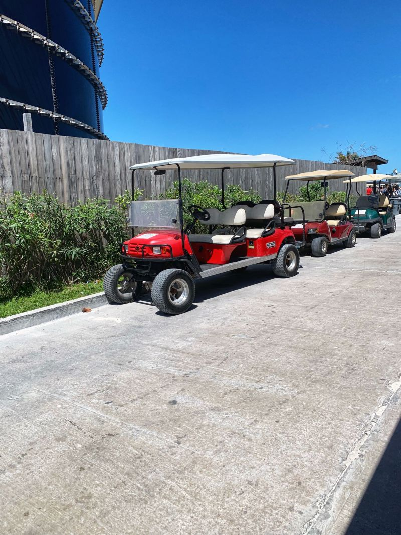 Renting-golf-buggies-to-get-around-Bimini