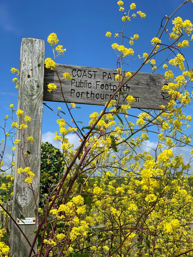 Coast-Path-Public-footpath-to-Porthcurno Cornwall