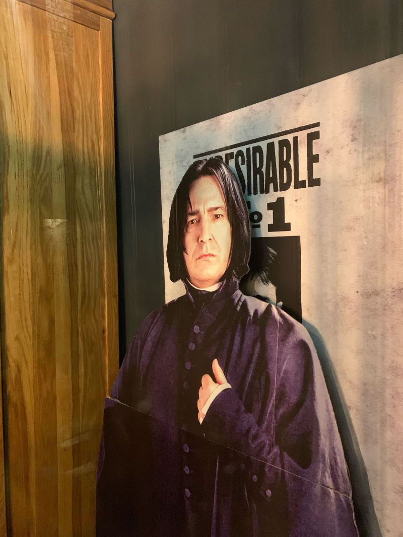 Professor-Snape-The-Shambles-York