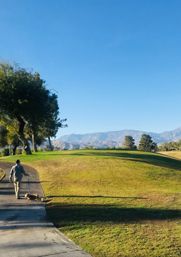 Westin Mission Hills Golf Resort and Spa: Palm Springs, CA
