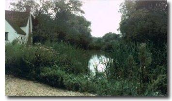 The scene in 1993