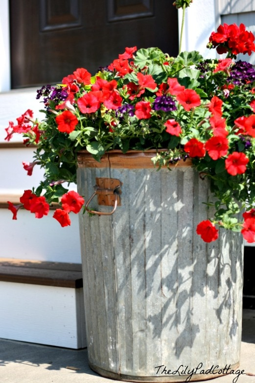 container gardening planter ideas