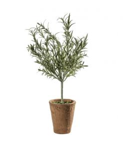 olive tree faux