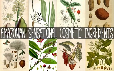 Amazonian Sensational Cosmetic Ingredients