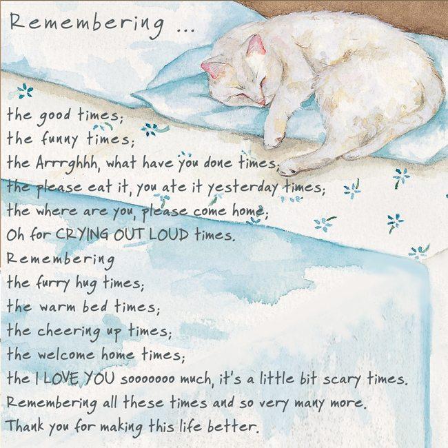 Cat Condolence Greeting Card Remember Cat Www