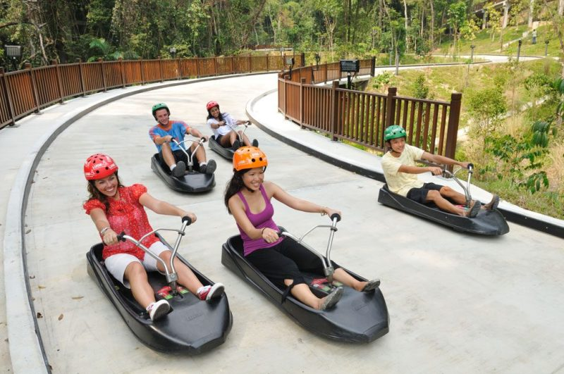 Skyride and Luge at Sentosa