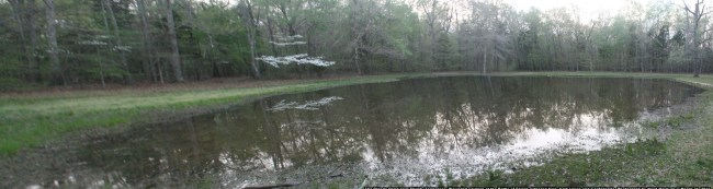 The Bloody Pond. Photograph by Newt Rayburn © 2011