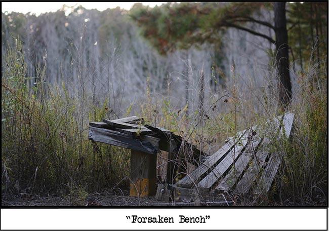 forsaken bench