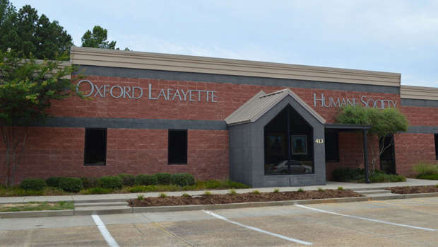 Oxford Lafayette Humane Society Board of Directors Releases Statement in Response to Recent Allegations