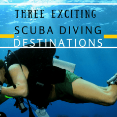 Three Exciting Scuba Diving Destinations