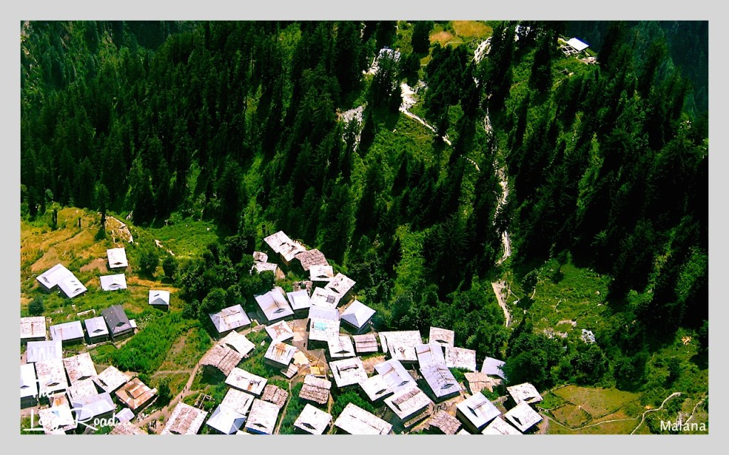 arial view of Malana village and vegetation.