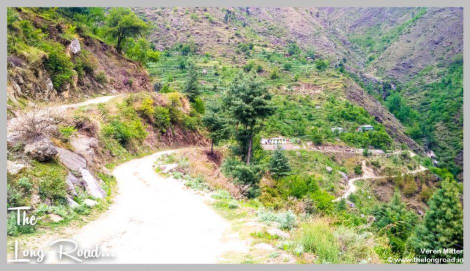 Road beyond Gushaini Tirthan valley GHNP