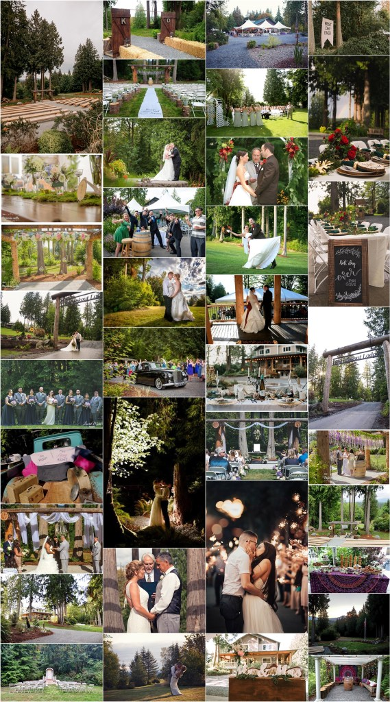 the lookout lodge snohomish wedding venue outdoor trees forest flowers logs
