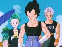 2 - Vegeta – Dragon Ball trunks bra