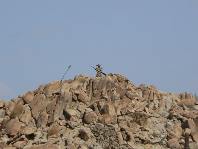 Stone Sentry