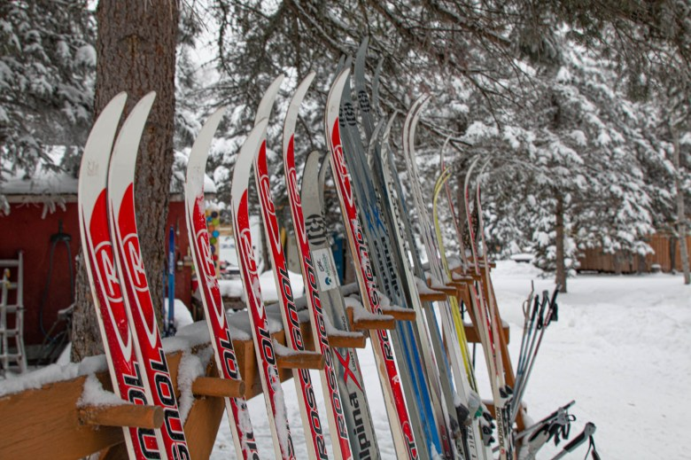 Best Cross Country Ski Trails in Saskatchewan