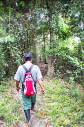 Our guide leading us through the jungle on our first trek.