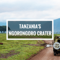It's like disney-come-alive on safari in Tanzania's Ngorongoro caldera (the largest in the world!)