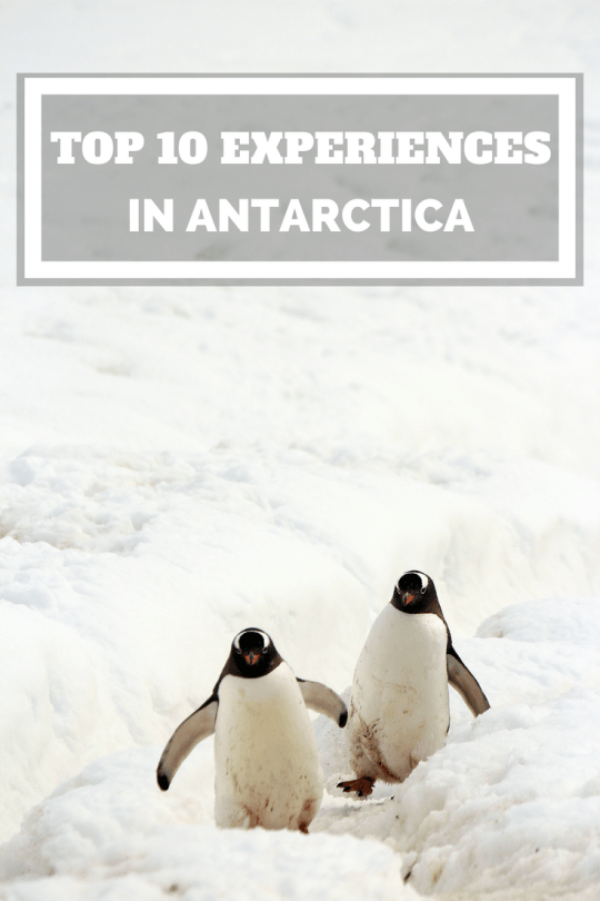 Top 10 experiences to have in Antarctica