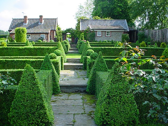 25 Examples Of Amazing Topiary Art And Designs