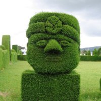 25 Examples of Amazing Topiary Art