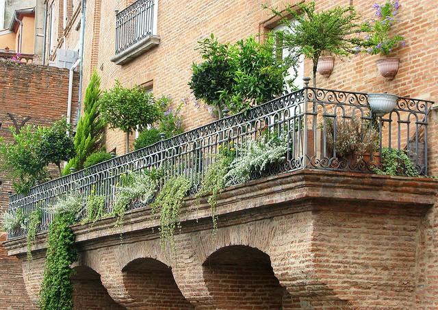 arbustos e plantas de jardim varanda
