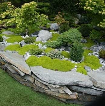 creative diy gardening idea # 18