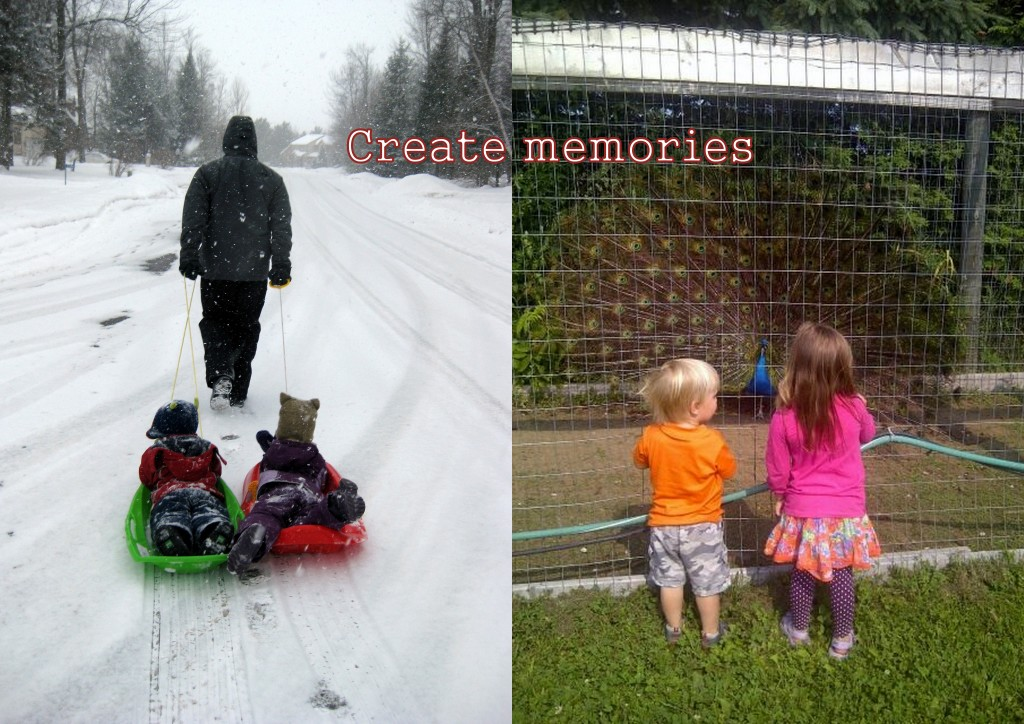 Sledding, Maple Farm, Petting Zoo, Trampoline Park, Library, outing to the park