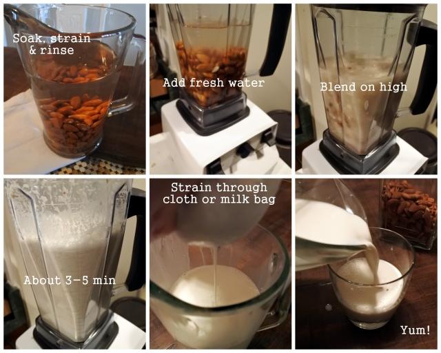 healthy recipe homemade milk vegan sugar-free dairy-free minimalist soy-free corn-free
