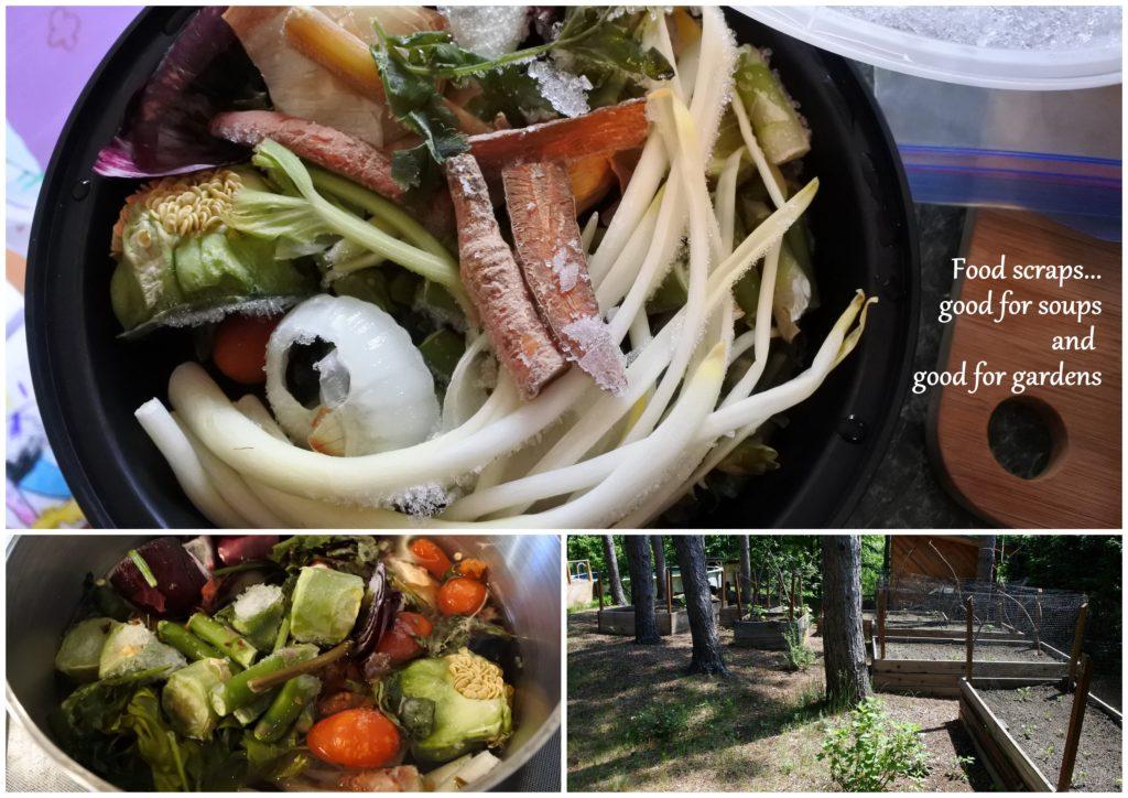 compost ottawa sustainable zero waste plastic free garden soup