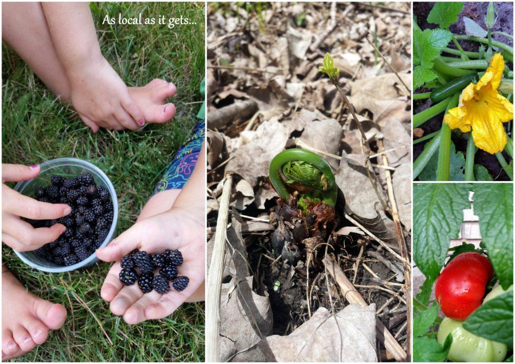 wild food ottawa foraging garden fresh homegrown loven life food jackie lane