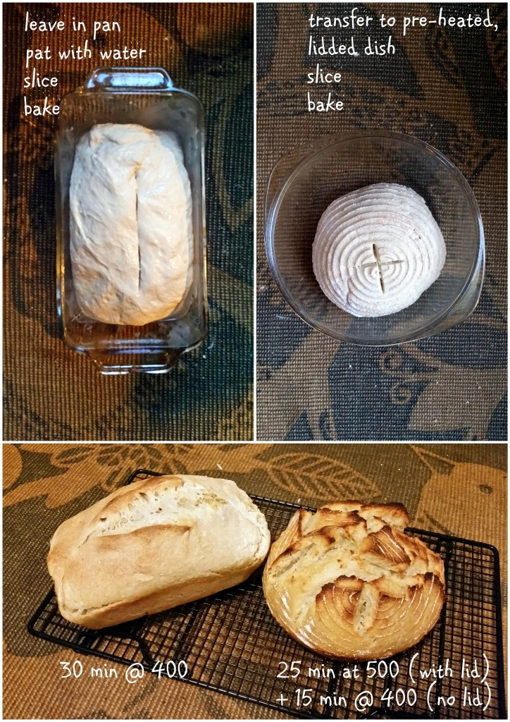 sourdough bread recipe loaf ferment homemade rustic sandwich ottawa food blog mom jackie lane l'oven life