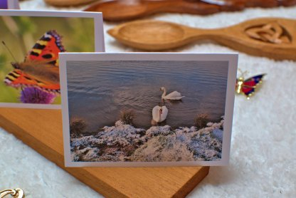 Swans message card
