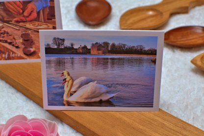 swans side by side message card