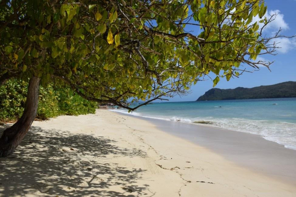 Seychelles - Raffles Praslin beach