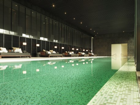 The Puli - Indoor pool
