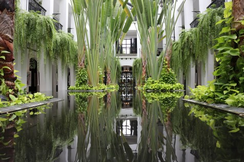 Indoor garden - The Siam Hotel