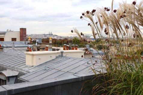 Le Narcisse Blanc - Suite Aurore terrace