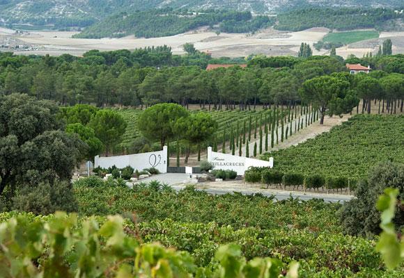 El vino se extrae de las viñas de la Bodega, cuya vista aérea se disfruta en esta fotografía