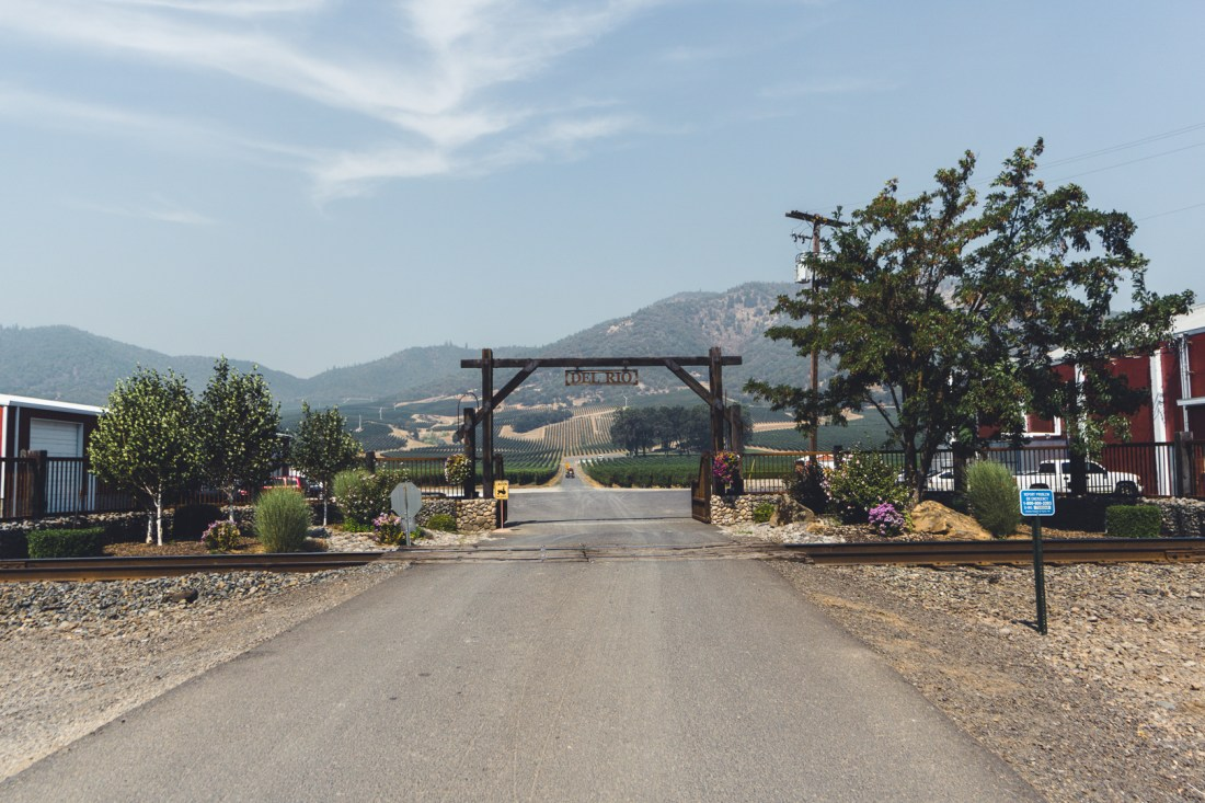 Del Rio Vineyards in Rogue Valley, OR