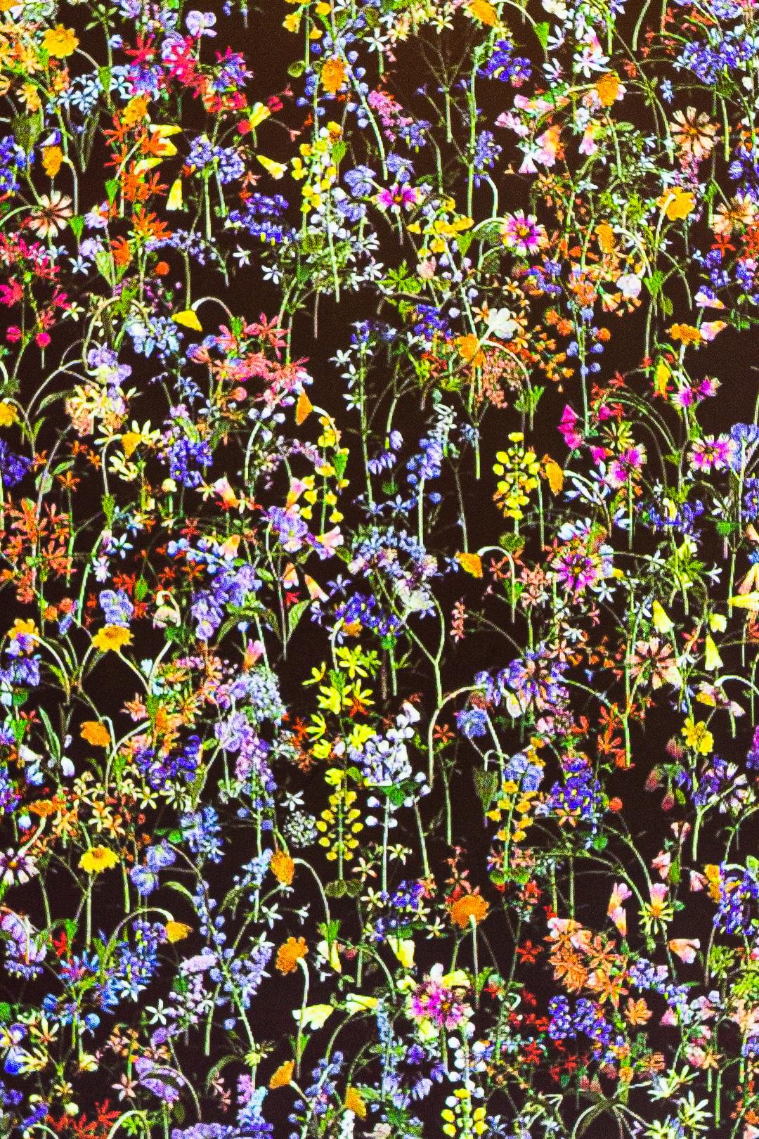 Digital Poisonous Flowers Artwork at Saffron Fields Vineyard