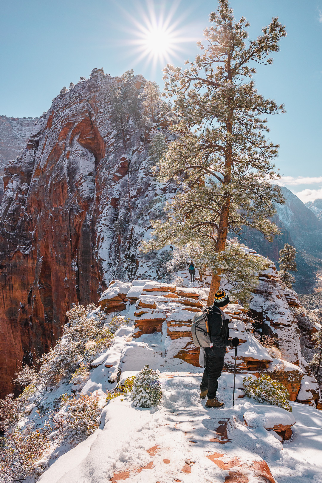 The Spine of Angels Landing