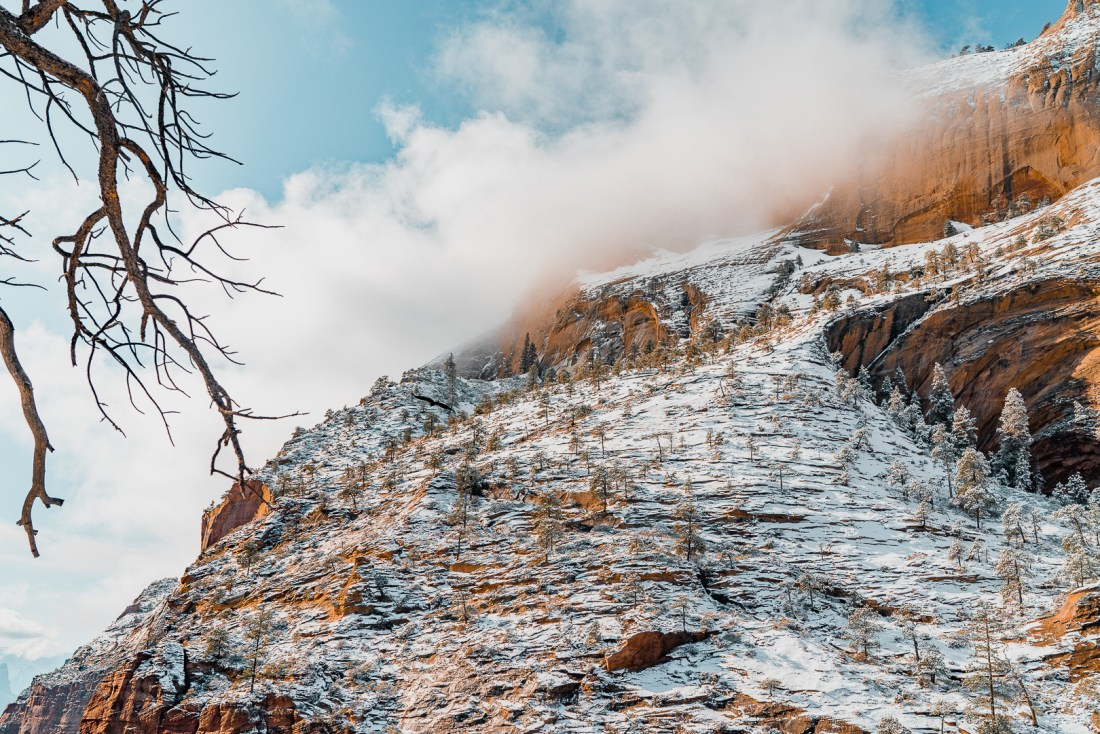 The View from Angels Landing in Winter
