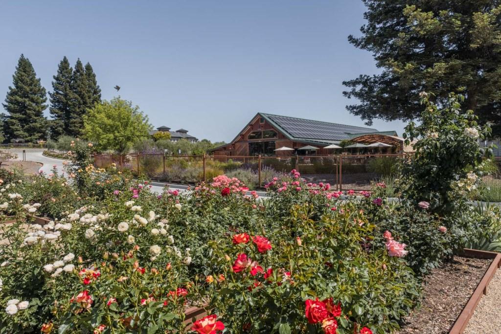 Bricoleur's Garden
