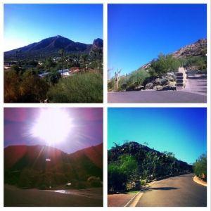 scenes from arizona run